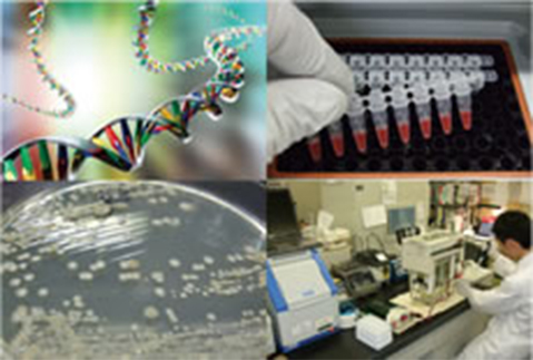 最新の遺伝子解析技術